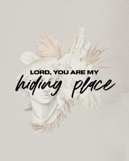 hiding place graphic (1)
